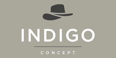 INDIGO Concept Web Design